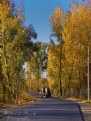 Picture Title - Abbottabad in Autumn