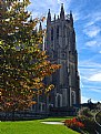 Picture Title - The National Cathedral (I)