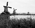 Picture Title - Holland