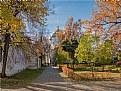 Picture Title - Autumn palette