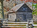 Picture Title - Puckett Cabin III