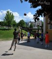 Picture Title - Basketball