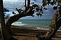 Picture Title - la mer
