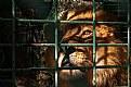 Picture Title - Prisoner