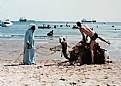 Picture Title - Camel ride in Aqaba.