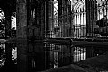 Picture Title - El estanque del Claustro BN - The pond of the Cloister BN