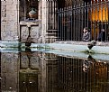 Picture Title - Reflejos en el claustro - Reflections in the cloister