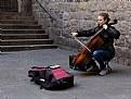 Picture Title - Violonchelista II - Cellist II