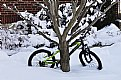 Picture Title - Bicycle in Snow