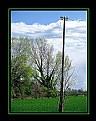 Picture Title - Light pole