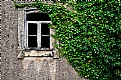 Picture Title - Old window