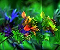 Picture Title - Colorful Floral