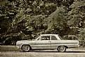 Picture Title - Roadside classics