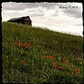 Picture Title - Subatan