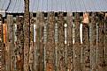 Picture Title - Fence Talkeetna Alaska