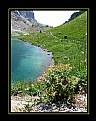 Picture Title - Volaja2