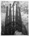 Picture Title - La Sagrada Familia, Barcelona