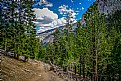 Picture Title - Mountain Trail