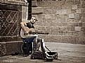 Picture Title - Guitarrista III - Guitarist III