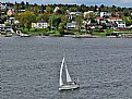 Picture Title - Sailboat & Houses