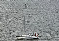 Picture Title - Sailboat