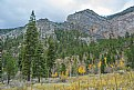 Picture Title - When fall comes to Mount Charleston