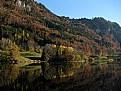 Picture Title - Lac de Montbovon