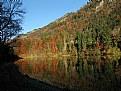 Picture Title - Lac de Montbovon (2)