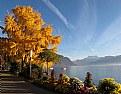 Picture Title - Quai de Montreux