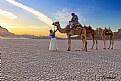 Picture Title - Desert Fairy...