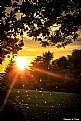 Picture Title - Sun Flair Sparkle