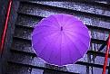 Picture Title - Rain, rain, rain