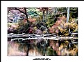 Picture Title - Autumn in New York
