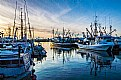 Picture Title - Steveston Harbour (3)