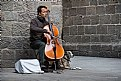 Picture Title - El violonchelista y su perro - The cellist and his dog