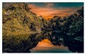 Picture Title - Reflection