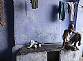 Picture Title - India 2016