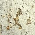 Picture Title - sea horse