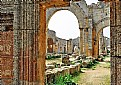 Picture Title - Columns & Archs