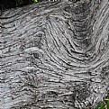 Picture Title - woodpattern