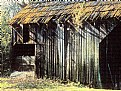 Picture Title - Mossy Barn
