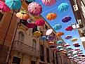 Picture Title - Parapluies