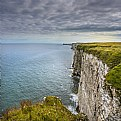 Picture Title - Gannets Cliffs