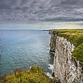 Gannets Cliffs