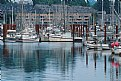 Picture Title - Newport Marina