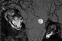 Picture Title - Werewolves