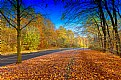 Picture Title - **Utum Time  II**