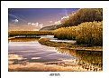 Picture Title - Winter Wetland
