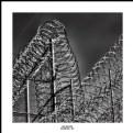 Picture Title - No Escape