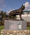 """Picture Title - """"Police Service Dog Memorial"""""""